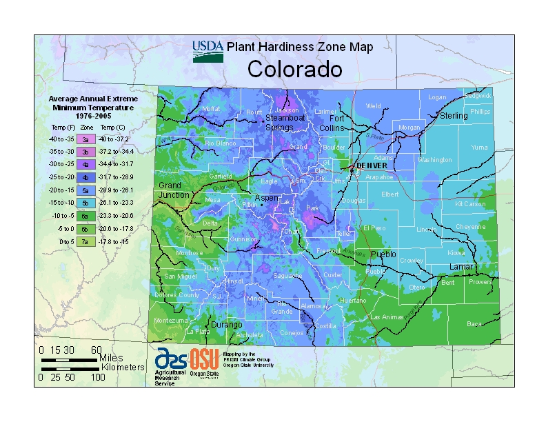 Usda Hardiness Zone Map - Planting-zone-map-of-us